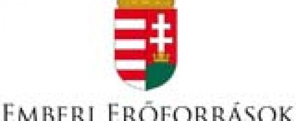 EMMI-logo
